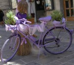 Purple bike - Lecce